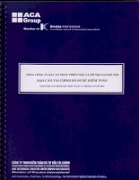 Báo cáo tài chính năm 2009 (đã kiểm toán) - Tổng Công ty Đầu tư Phát triển Nhà và Đô thị Nam Hà Nội