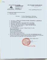 Báo cáo tài chính quý 1 năm 2011 - Công ty Cổ phần Dược Lâm Đồng - Ladophar
