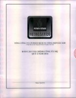 Báo cáo tài chính công ty mẹ quý 2 năm 2014 - Tổng Công ty Cổ phần Dịch vụ Tổng hợp Dầu khí