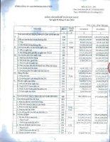 Báo cáo tài chính hợp nhất quý 4 năm 2014 - Tổng Công ty Gas Petrolimex-CTCP