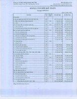 Báo cáo tài chính quý 3 năm 2012 - Công ty cổ phần Chứng khoán Liên Việt