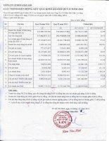 Báo cáo tài chính quý 2 năm 2014 - Công ty Cổ phần Bột giặt Lix