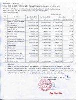 Báo cáo tài chính quý 2 năm 2013 - Công ty Cổ phần Bột giặt Lix
