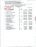 Báo cáo tài chính hợp nhất quý 2 năm 2011 - Công ty Cổ phần Tập đoàn PAN
