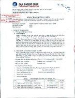 Báo cáo thường niên năm 2010 - Công ty Cổ phần Tập đoàn PAN