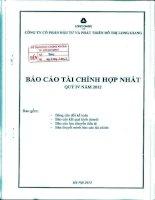 Báo cáo tài chính hợp nhất quý 4 năm 2012 - Công ty cổ phần Đầu tư và Phát triển Đô thị Long Giang