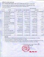 Báo cáo tài chính quý 1 năm 2013 - Công ty Cổ phần Bột giặt Lix