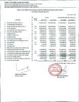 Báo cáo KQKD hợp nhất quý 2 năm 2011 - Công ty Cổ phần Tập đoàn PAN