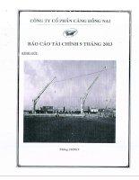 Báo cáo tài chính quý 3 năm 2013 - Công ty Cổ phần Cảng Đồng Nai