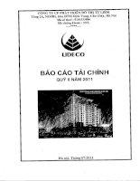 Báo cáo tài chính công ty mẹ quý 2 năm 2011 - Công ty Cổ phần Phát triển Đô thị Từ Liêm