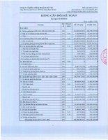 Báo cáo tài chính quý 1 năm 2013 - Công ty cổ phần Chứng khoán Liên Việt