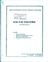 Báo cáo tài chính hợp nhất quý 4 năm 2010 - Công ty cổ phần Đầu tư và Phát triển Đô thị Long Giang
