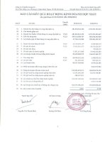 Báo cáo KQKD hợp nhất quý 2 năm 2011 - Công ty cổ phần LICOGI 16