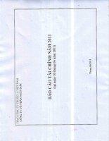 Báo cáo tài chính quý 2 năm 2011 - Công ty Cổ phần Ngân Sơn