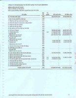 Báo cáo tài chính năm 2010 (đã kiểm toán) - Công ty Cổ phần Đầu tư và Xây dựng Thủy lợi Lâm Đồng