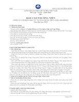 Báo cáo thường niên năm 2012 - Công ty Cổ phần Đầu tư và Xây dựng Thủy lợi Lâm Đồng