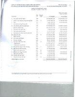 Báo cáo tài chính năm 2007 (đã kiểm toán) - Công ty Cổ phần Nhựa Thiếu niên Tiền Phong