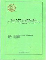 Báo cáo thường niên năm 2013 - Công ty Cổ phần Chứng khoán Phượng Hoàng