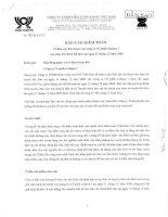 Báo cáo tài chính năm 2009 (đã kiểm toán) - Công ty Cổ phần Lilama 7