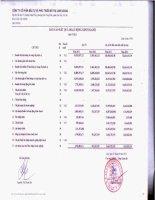 Báo cáo KQKD công ty mẹ quý 4 năm 2012 - Công ty cổ phần Đầu tư và Phát triển Đô thị Long Giang