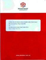Báo cáo tài chính quý 1 năm 2014 - Công ty cổ phần Phát triển Bất động sản Phát Đạt