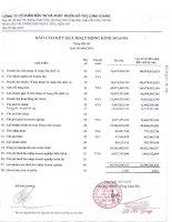 Báo cáo KQKD hợp nhất quý 3 năm 2010 - Công ty cổ phần Đầu tư và Phát triển Đô thị Long Giang