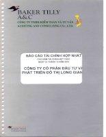 Báo cáo tài chính hợp nhất năm 2010 (đã kiểm toán) - Công ty cổ phần Đầu tư và Phát triển Đô thị Long Giang