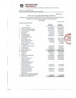 Báo cáo tài chính hợp nhất quý 4 năm 2009 - Công ty Cổ phần Tập đoàn PAN