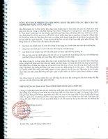 Báo cáo tài chính hợp nhất quý 2 năm 2012 (đã soát xét) - Công ty Cổ phần Đường Ninh Hòa
