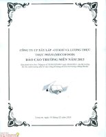 Báo cáo thường niên năm 2013 - CTCP Xây lắp Cơ khí và Lương thực Thực phẩm