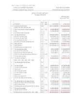 Báo cáo tài chính quý 1 năm 2010 - Công ty Cổ phần Ngân Sơn