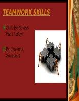 Kĩ năng làm việc nhóm TEAMWORK SKILLS