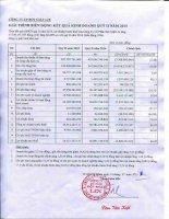 Báo cáo tài chính quý 2 năm 2015 - Công ty Cổ phần Bột giặt Lix