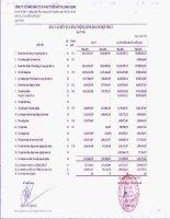 Báo cáo KQKD hợp nhất quý 4 năm 2012 - Công ty cổ phần Đầu tư và Phát triển Đô thị Long Giang