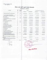 Báo cáo KQKD quý 1 năm 2013 - Công ty Cổ phần Thép Nam Kim