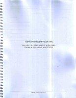 Báo cáo tài chính năm 2011 (đã kiểm toán) - Công ty Cổ phần Ngân Sơn