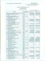 Báo cáo tài chính công ty mẹ quý 2 năm 2015 - Công ty Cổ phần Vận tải và Dịch vụ Petrolimex Hải Phòng