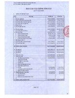 Báo cáo tài chính quý 1 năm 2009 - Công ty Cổ phần Kinh doanh Khí hóa lỏng Miền Nam