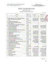 Báo cáo tài chính quý 2 năm 2010 - Công ty Cổ phần Kinh doanh Khí hóa lỏng Miền Nam