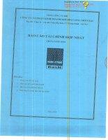 Báo cáo tài chính hợp nhất quý 4 năm 2012 - Công ty Cổ phần Kinh doanh Khí hóa lỏng Miền Bắc