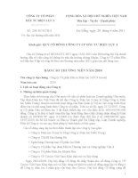 Báo cáo thường niên năm 2010 - CTCP Đầu tư Điện lực 3