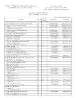 Báo cáo tài chính quý 1 năm 2011 - Công ty cổ phần Chứng khoán Dầu khí