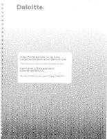Báo cáo tài chính hợp nhất năm 2015 (đã kiểm toán) - Công ty Cổ phần Đầu tư Hạ tầng và Đô thị Dầu khí PVC