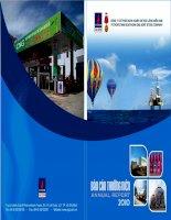 Báo cáo thường niên năm 2010 - Công ty Cổ phần Kinh doanh Khí hóa lỏng Miền Nam