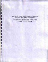 Báo cáo tài chính công ty mẹ năm 2014 (đã kiểm toán) - Tổng công ty Pisico Bình Định - CTCP