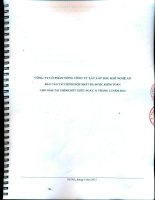 Báo cáo tài chính hợp nhất năm 2014 (đã kiểm toán) - Công ty Cổ phần Tổng Công ty Xây lắp Dầu khí Nghệ An