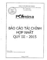 Báo cáo tài chính hợp nhất quý 3 năm 2015 - Công ty Cổ phần Thép Pomina