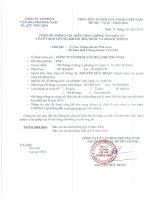 Báo cáo tài chính hợp nhất quý 2 năm 2014 - Công ty Cổ phần Văn hóa Phương Nam