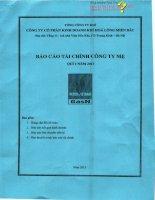 Báo cáo tài chính công ty mẹ quý 1 năm 2013 - Công ty Cổ phần Kinh doanh Khí hóa lỏng Miền Bắc
