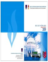 Báo cáo thường niên năm 2009 - Công ty Cổ phần Kinh doanh Khí hóa lỏng Miền Nam